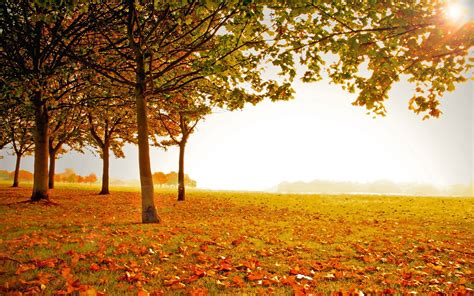 Beautiful Autumn Landscapes Wallpapers by Autumn Landscape Wallpapers Wallpaper Cave