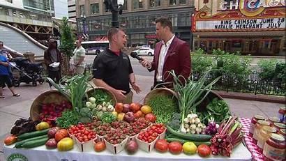 Market Farmers Markets Chicago Farmer Guide Ultimate