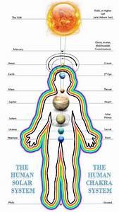 Tongue Chart Ayurveda Collection Of Human Frequencies Reflexology Chakra