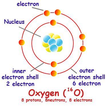 Electron Shell Diagram   General Chemistry   Pinterest