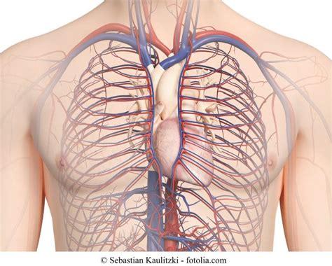 aortenaneurysma abdominal symptome aufsteigend