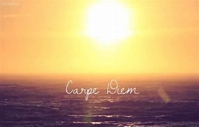 Carpe Diem Swagger Sun Sunset Beach Latin