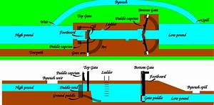 Diagram Perineum Diagram Canal Full Version Hd Quality Diagram Canal Diagramroyei Parkhotelcalifornia It