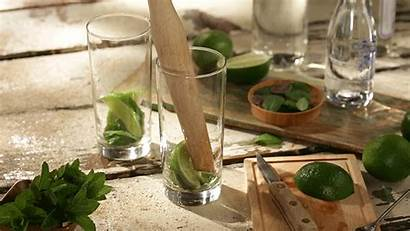 Cocktail Mojito Classic Muddle Drinks