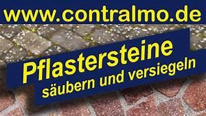 Flechten Entfernen Hausmittel : moos entfernen pflaster sauberes pflaster moos von ~ Lizthompson.info Haus und Dekorationen