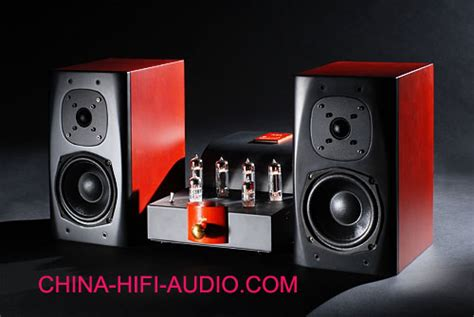 Best Match Bewitch Music Angel Hifi Amp Speakers