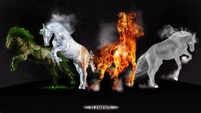 Elements Power Deviantart Element Four Animals Horse
