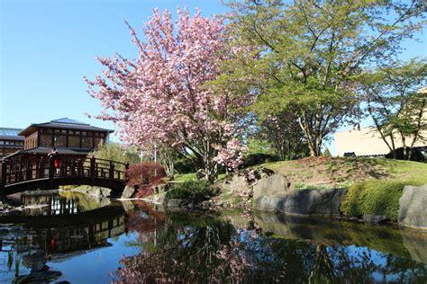 Japanischer Garten Bad Langensalza Hund by Lohnt Sich Die Th 252 Ringencard