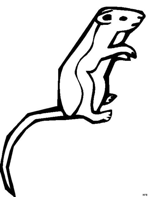 erdmaennchen mit langem schwanz ausmalbild malvorlage
