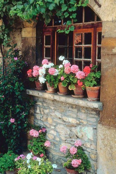Window Ledge Garden by 410 Best Images About Container Garden Window Dress On