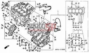 Motosp - Honda - Cbr1000rr  Ed  2005