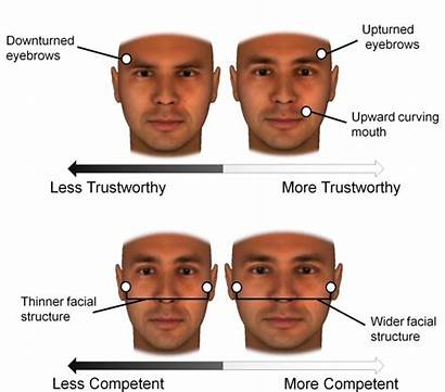 Facial Structure Bone Influence Person Expressions Traits