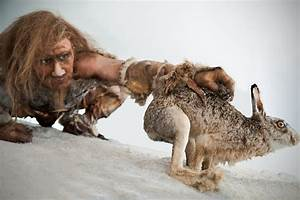 Caveman Diet Plan - Let Us Clarify the Myth behind It