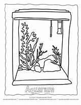 Aquarium Coloring Fish Clipart Empty Tank Drawing Seaweed Tropical Clip Ausmalbilder Outline Blank Popular Colorear Library Sketch Template Votos sketch template