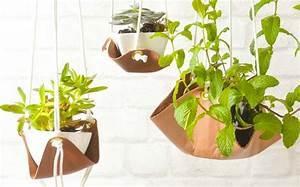 Suspension Pour Plante Interieur : des suspensions en cuir diy pour vos plantes shake my blog ~ Teatrodelosmanantiales.com Idées de Décoration