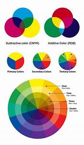 Psychology Infographic And Charts Psychology   Color