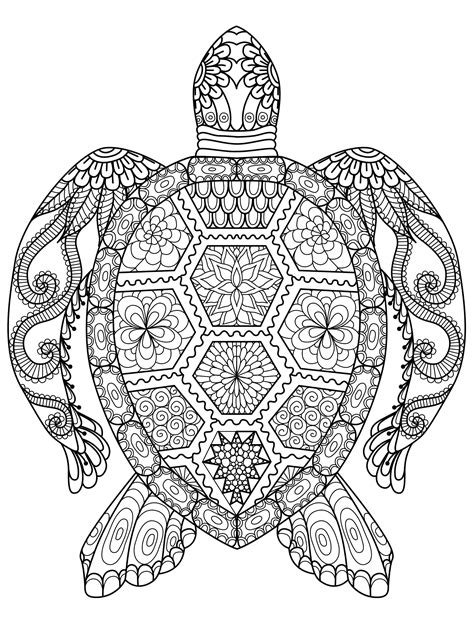 1000+ images about Adult and Children's Coloring Pages on | coloring | Turtle coloring pages