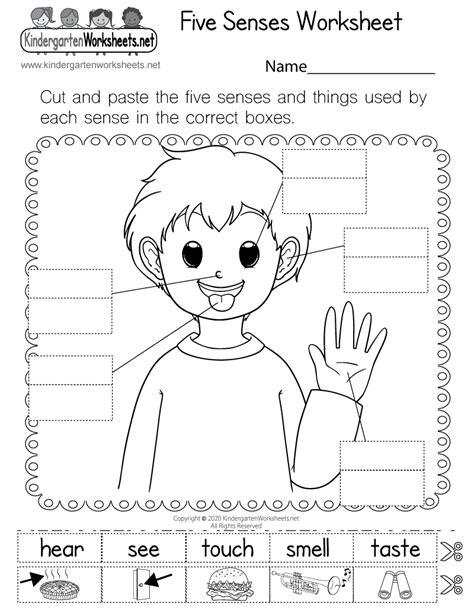 senses worksheet  kindergarten  printable