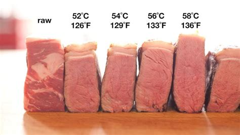 plat cuisiné sous vide 20 best ideas about temperature chart on