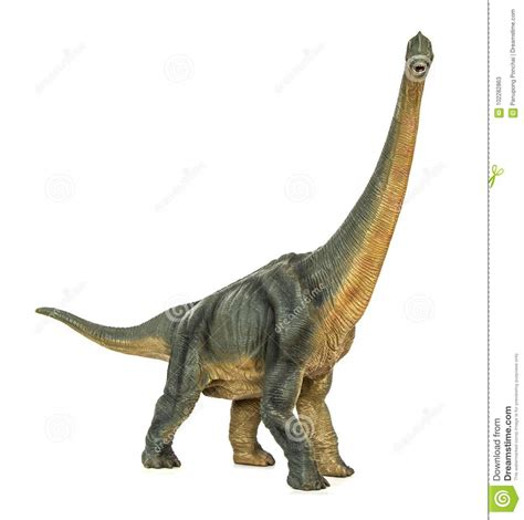 Dinosaur Long Necked Sauropod Diermibot Breed Name