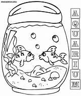 Aquarium Coloring Pages Fish Tank Print sketch template