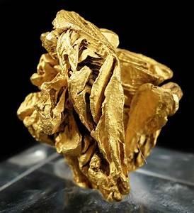 Gold - GOLD09-05 - La Gran Sabana - Venezuela Mineral Specimen
