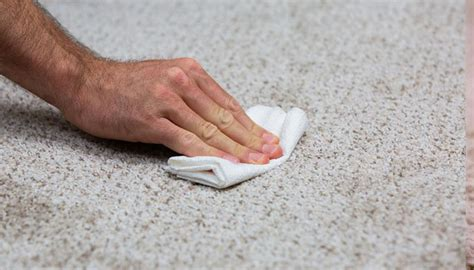 It's not only useful for removing coffee stains, but it's also suitable for the fifth method on our list of how to get coffee stains out of carpet is by using salt. How do you get old stains out of carpet? | Certified Clean Care