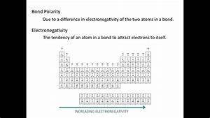 Diagram  Diagram Of Polarity Full Version Hd Quality Of