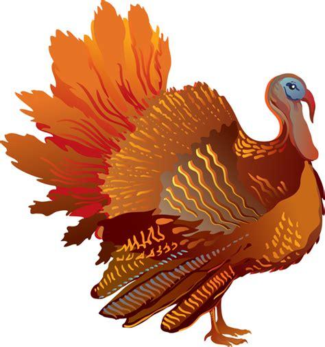 free clip turkey clipart best