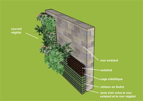 faire un mur vegetal exterieur soi meme un mur v 233 g 233 tal c est quoi mur mure vegetal