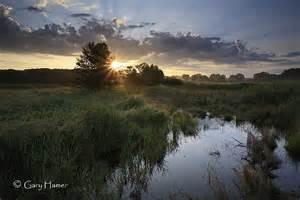 Summer Sunrise Nature Scenes