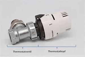 Heizung Muss Ständig Entlüftet Werden : wie sie am einfachsten das thermostatventil wechseln ~ Frokenaadalensverden.com Haus und Dekorationen