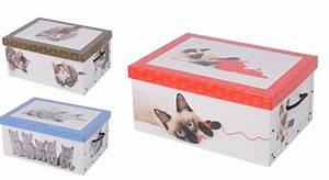 Schachtel Für Fotos : 2er aufbewahrungs box mit deckel katzenmuster kiste karton schachtel pappe ~ Orissabook.com Haus und Dekorationen