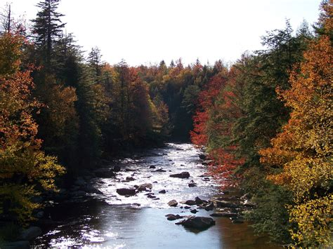 blackwater falls state rivers virginia park west wv trails near river mountains running trail abounds beauty onlyinyourstate demanding attention these