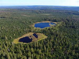 NorthCentral Black Forest Nature Park Rugged Nature And