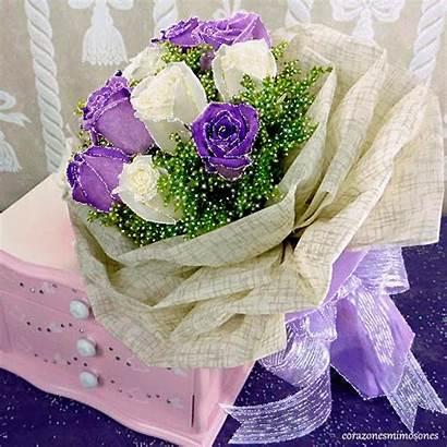 Flores Gifs Encontradas Hermosos Mirta Gifshermosos Rosas