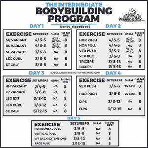 Intermediate Bodybuilding Program Spreadsheet By Ripped Body  5 Day   2020