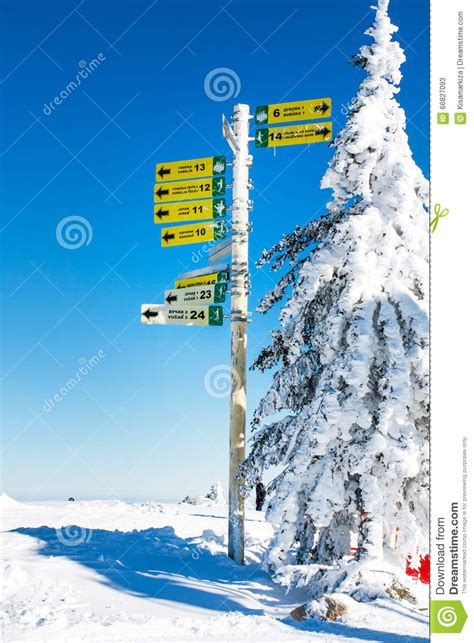 Signpost Giving Directions To Different Ski Slopes Editorial Slopes In Alpine Ski Resort Borovets Bulgaria Editorial