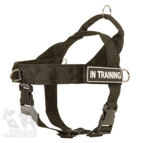 pull harness  boston terrier