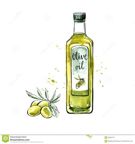 cuisine saine bouteille d 39 huile d 39 olive d 39 aquarelle de vecteur