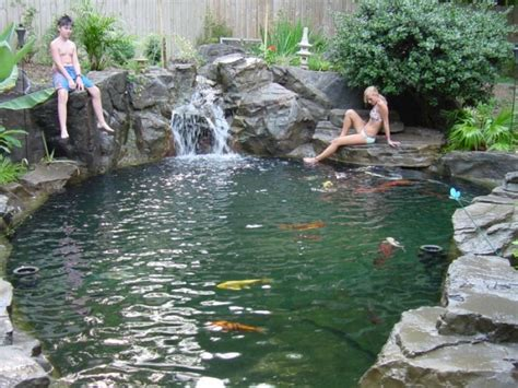 Swimming Pond : Aquariums Koi Ponds Water Features Lanscaping