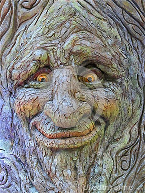 tree face royalty  stock photography image