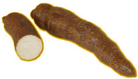soja cuisine recettes frites de manioc mimi végétale