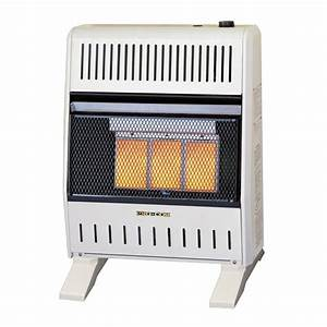 Williams Wall Furnace  Trendy Direct Vent Gas Furnace