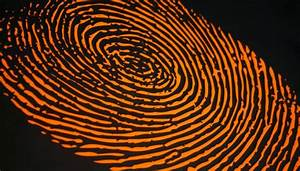 Classes Of Fingerprints