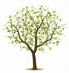 spring-tree-vector-382157 | Spring tree, Vector trees ...