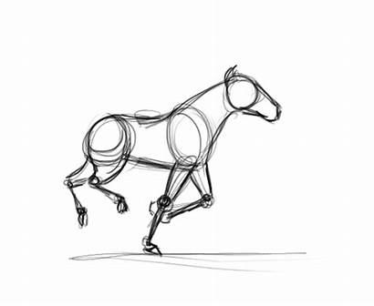 Running Animated Horse Gifer