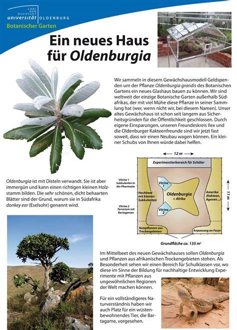 Botanischer Garten Oldenburg Philosophenweg by Botanische G 228 Rten In Niedersachsen