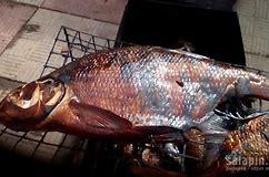 закон о рыболовстве в ростовской области 2019
