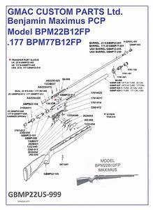 Maximus Diagram  U0026 Spare Parts